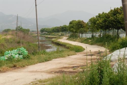 Toegangsweg naar parel kwekerij